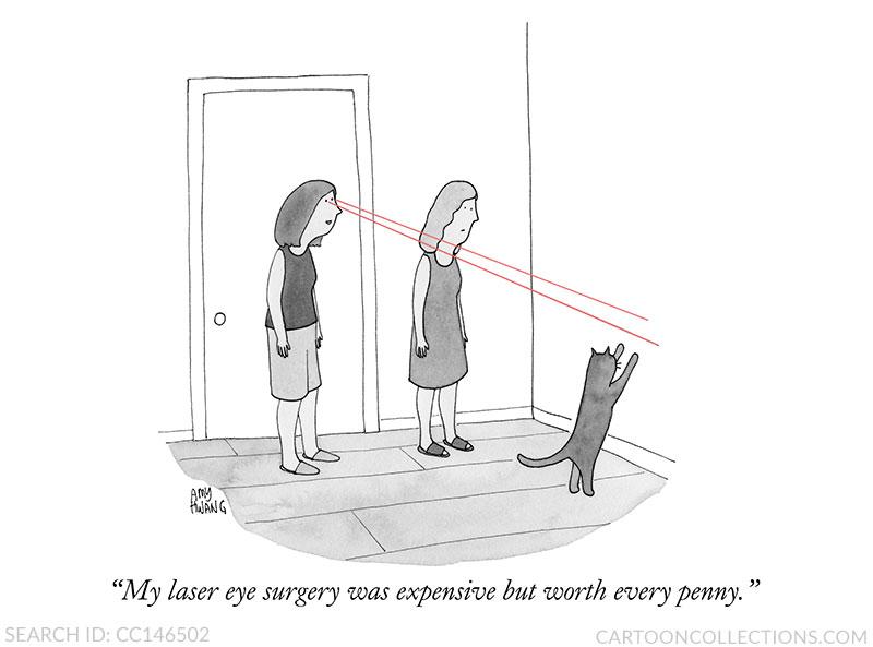 Amy Hwang cartoons