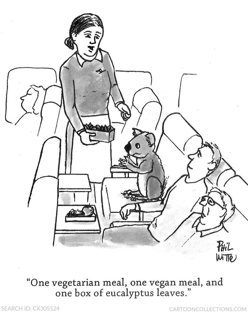 Phil Witte cartoon