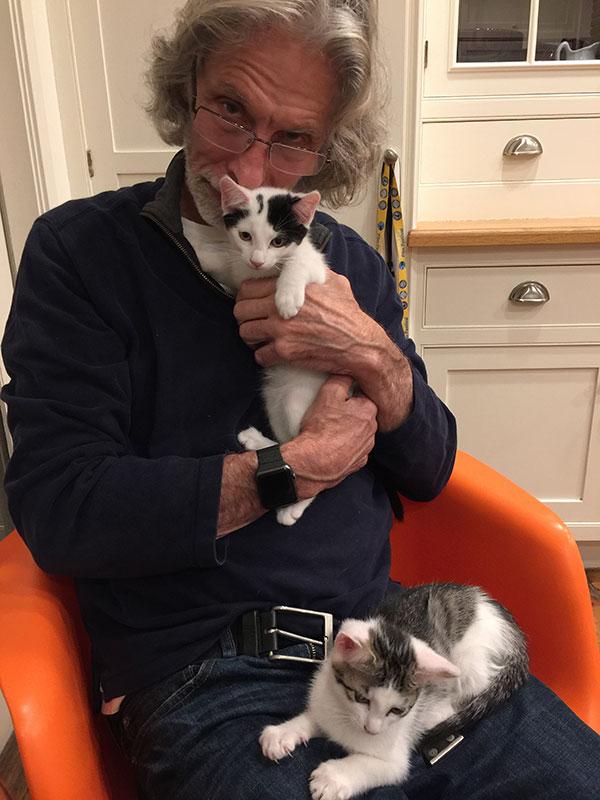 Bob's cats