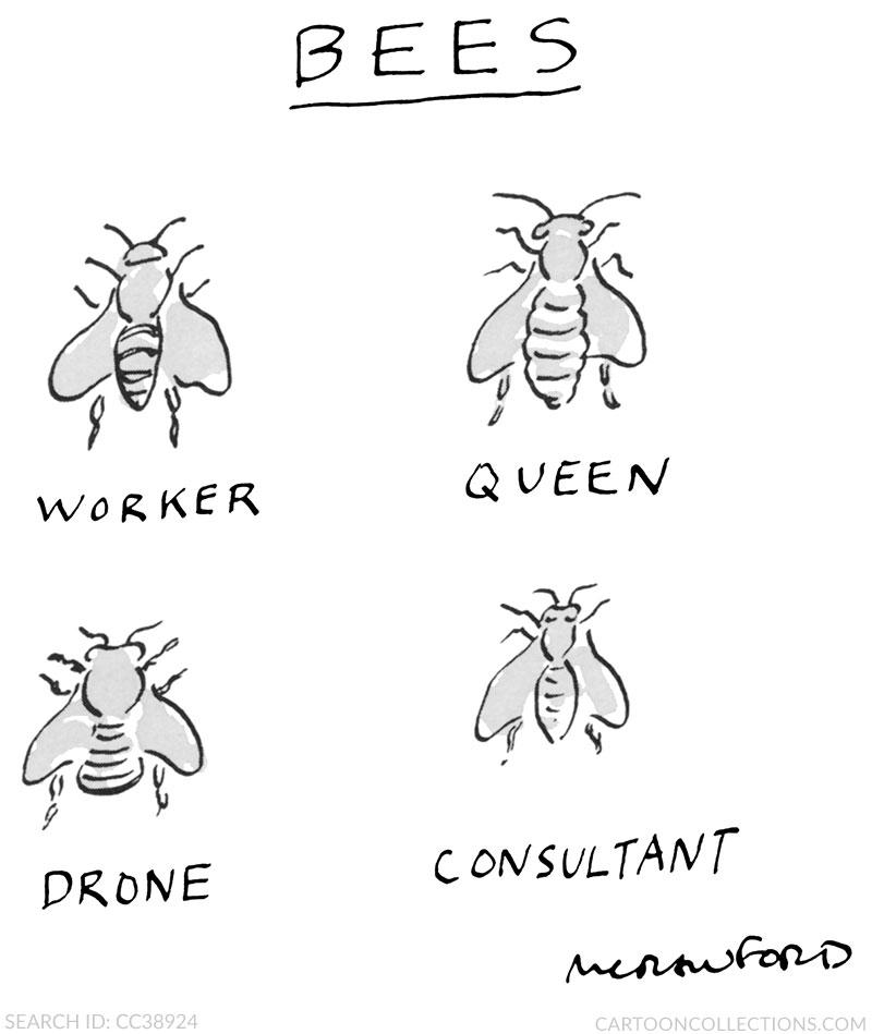 Michael Crawford cartoons