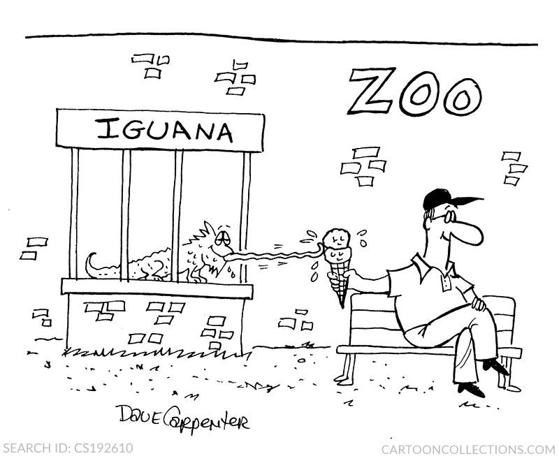 iguana cartoons