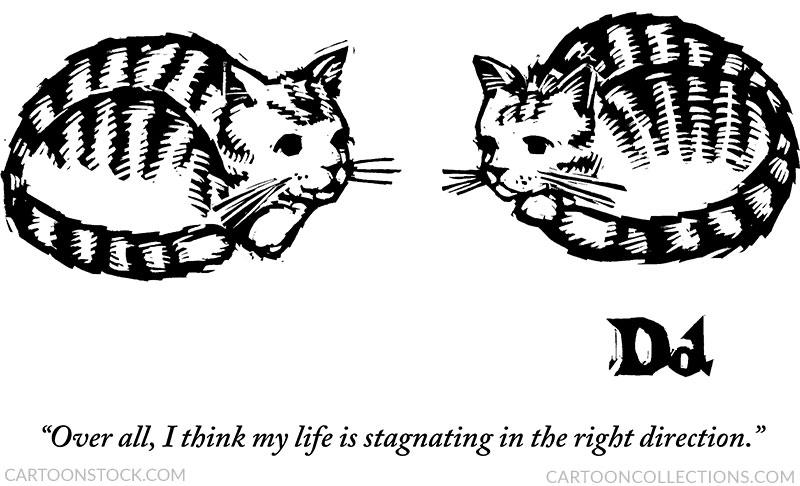 Drew Dernavich cartoons