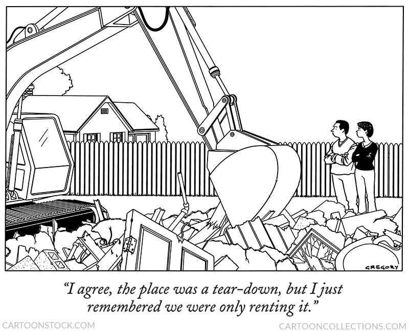 remodeling cartoons