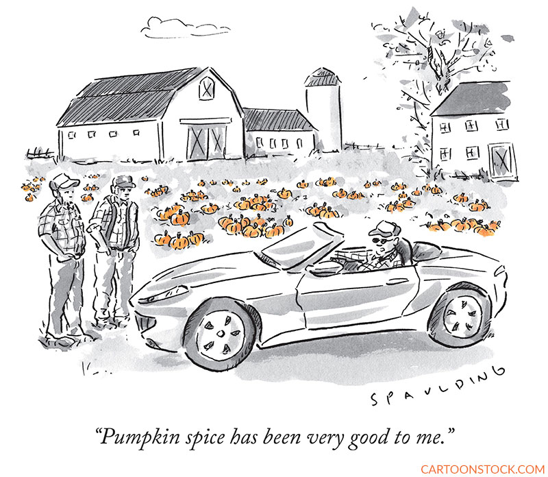 pumpkin spice cartoons